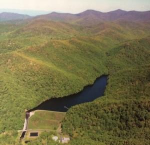 Bee-Tree-Reservoir